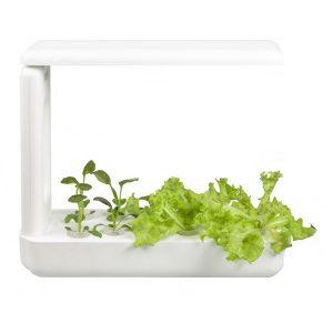 hộp trồng cây hafele table box (T-box) 539.76.980